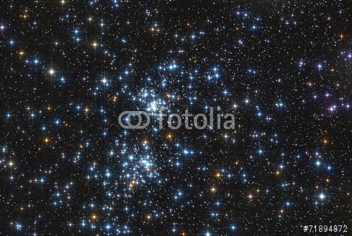 fotolia_71894872